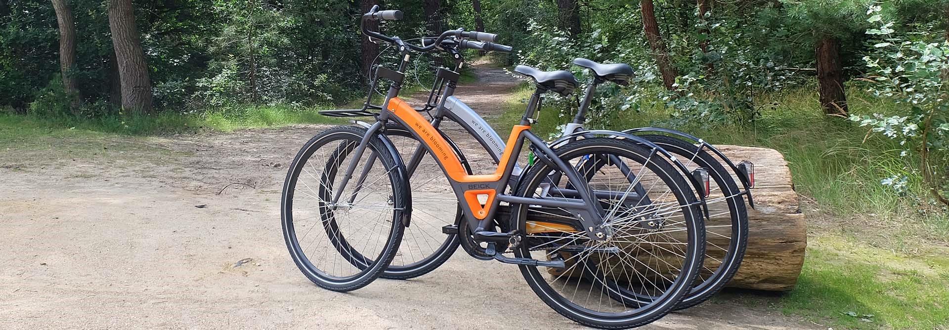 arrangement fiets