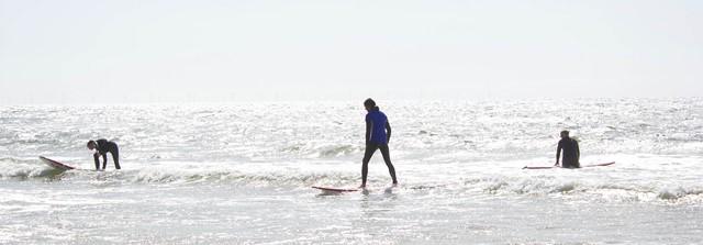 blooming beach surfen
