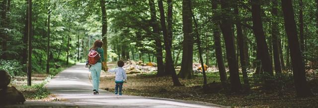 banner-zomer-wandeling.jpg