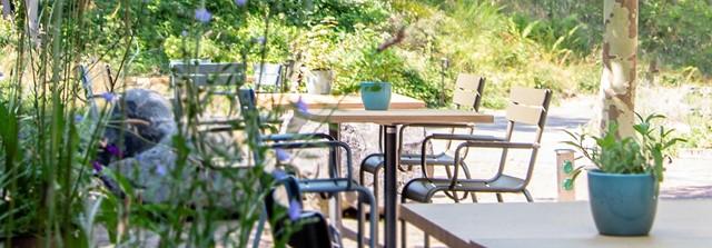terras_bloominghotel.jpg (1)